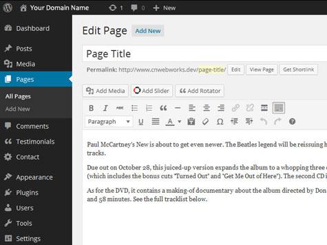 WordPress backend - ConnieNassiosWebworks